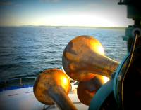 Horns on Puget Sound
