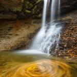 """""""Blue Hen Falls Swirling Leaves"""" by cyorkphoto"""
