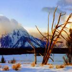 """Winterscape"" by matthewjackson"