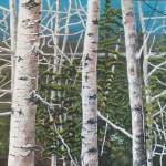 """""""Tangled Birch"""" by tgministry"""