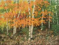 Cindy's Birch Woods