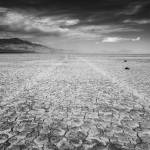 """""""Playa Tracks"""" by stillwildphotography"""