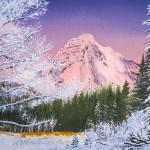 """Mt Rainier viewed from Longmire in winter"" by dgolden"
