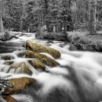 """Rocky Mountain National Forest Stream BWSC"" by lightningman"