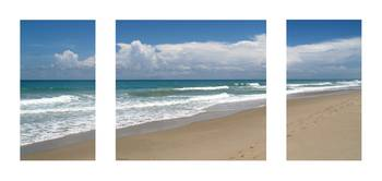 Treasure Coast Beach Florida Seascape C4 Triptych