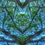 """ABSTRACT PENANG TREES #4617"" by nawfalnur"