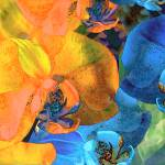 """""""Complentary Blooms 6"""" by LyndaLehmann"""