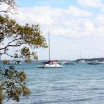 """Macleay Island Queensland Australia"" by nevilleprosser"