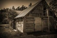 Storage Shed In Sepia
