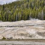 """Upper Geyser Basin"" by PaulCoco"