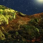 """Beach Cliff in Bloom"" by RCdeWinter"