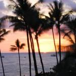 """""""Aloha Oe"""" by WrightFineArt"""