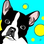 """Cute Boston Terrier Art"" by waterart"