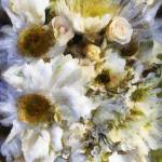 Tattered Bouquet