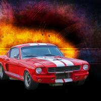 1966 GT350 Mustang Fastback Art Prints & Posters by Stuart Row