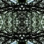 """ABSTRACT PENANG TREES #4315, EDIT C, 21 DECEMBER"" by nawfalnur"