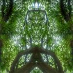 """ABSTRACT PENANG TREES #4317, EDIT C"" by nawfalnur"