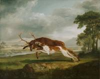 George Stubbs, English - Hound Coursing a Stag