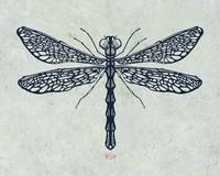 Dragonfly texture signed 2014