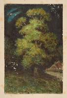 British School 19th century Study of a tree