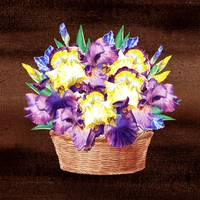 Basket With Iris Flowers