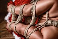 Christmas - Fine Art of Bondage