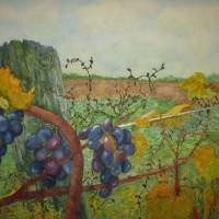 Fruit of the Vine Art Prints & Posters by Joan  L. Mester