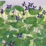 """""""Violets II 2012"""" by WendySysouphat"""