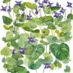 """Violets I 2012"" by WendySysouphat"