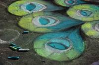 Chalk Street Art - Peacock