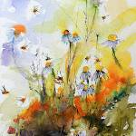 """Chamomile Flowers and Bees Watercolor and Ink"" by GinetteCallaway"