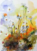 Chamomile Flowers and Bees Watercolor and Ink