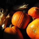"""""""Pulchritudinous Pumpkins"""" by lyndazurn"""