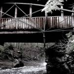 """Covered Bridge over the Falls"" by lyndazurn"