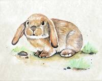Little Bunny in Watercolor