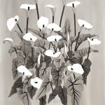 """""""Arum Lilies III 2015"""" by WendySysouphat"""