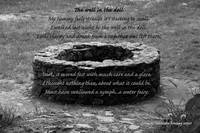 The well in the dell - black and white