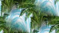 palm-trees-284125512