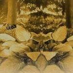 """""""Botanical Gardens NYC"""" by frankreggio"""