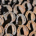 """""""Horseshoes at the Market"""" by rhamm"""