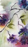 Elderberries Modern Watercolor and Ink by Ginette