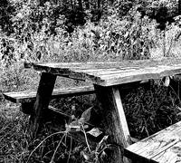 Hamlet Vineyards Picnic Table Enhanced WM