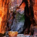 """Zion Narrows With Boulder"" by almarphotography"