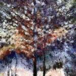 """Autumn Cedars"" by RCdeWinter"