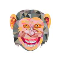 Chimpanzee Head Front Low Polygon