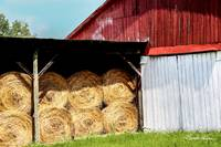 Barn and hay