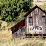 """""""Barn with Ale 8 sign"""" by BrendaSalyersArt"""