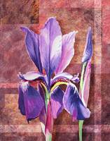 Decorative Iris Flower Painting