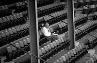 The Baseball Fan II