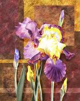Iris Flower Decorative Artwork
